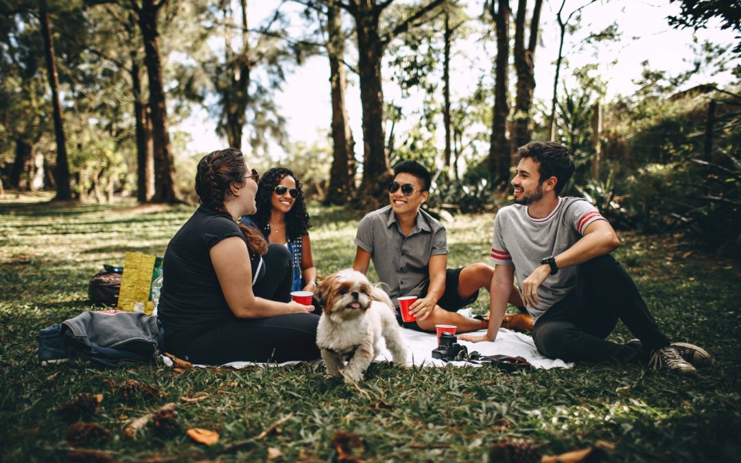 What the Best College Student Wellness Programs Include