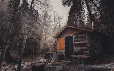 They Call it Cabin Fever, But it Leaves You Feeling More Crazy Than Sick