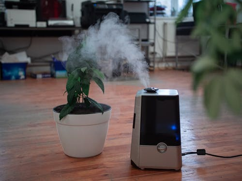 Are Air Purifiers Really Worth It?