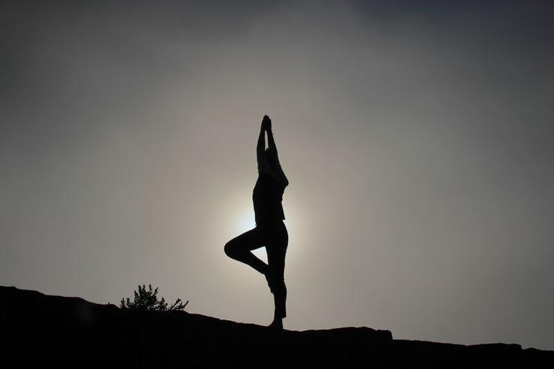 best wellness program