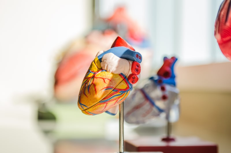 how does exercise prevent heart disease