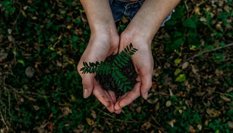 How to Be More Environmentally Conscious